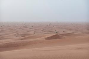 20130110_Dubai_015