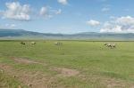 20130113_Tanzania_270