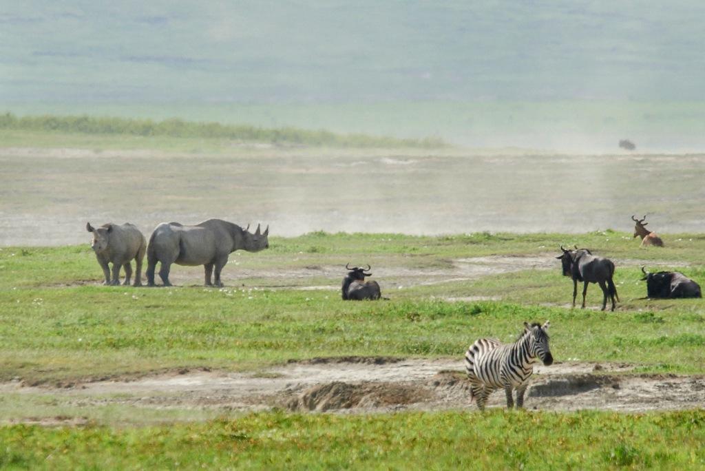 20130114_Tanzania_502-x2