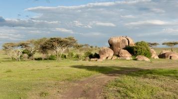 20130116_Tanzania_423