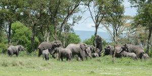 20130116_Tanzania_198