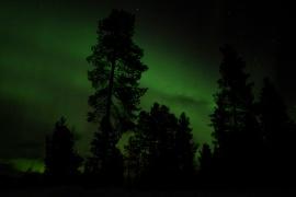 20150217_kiruna_130